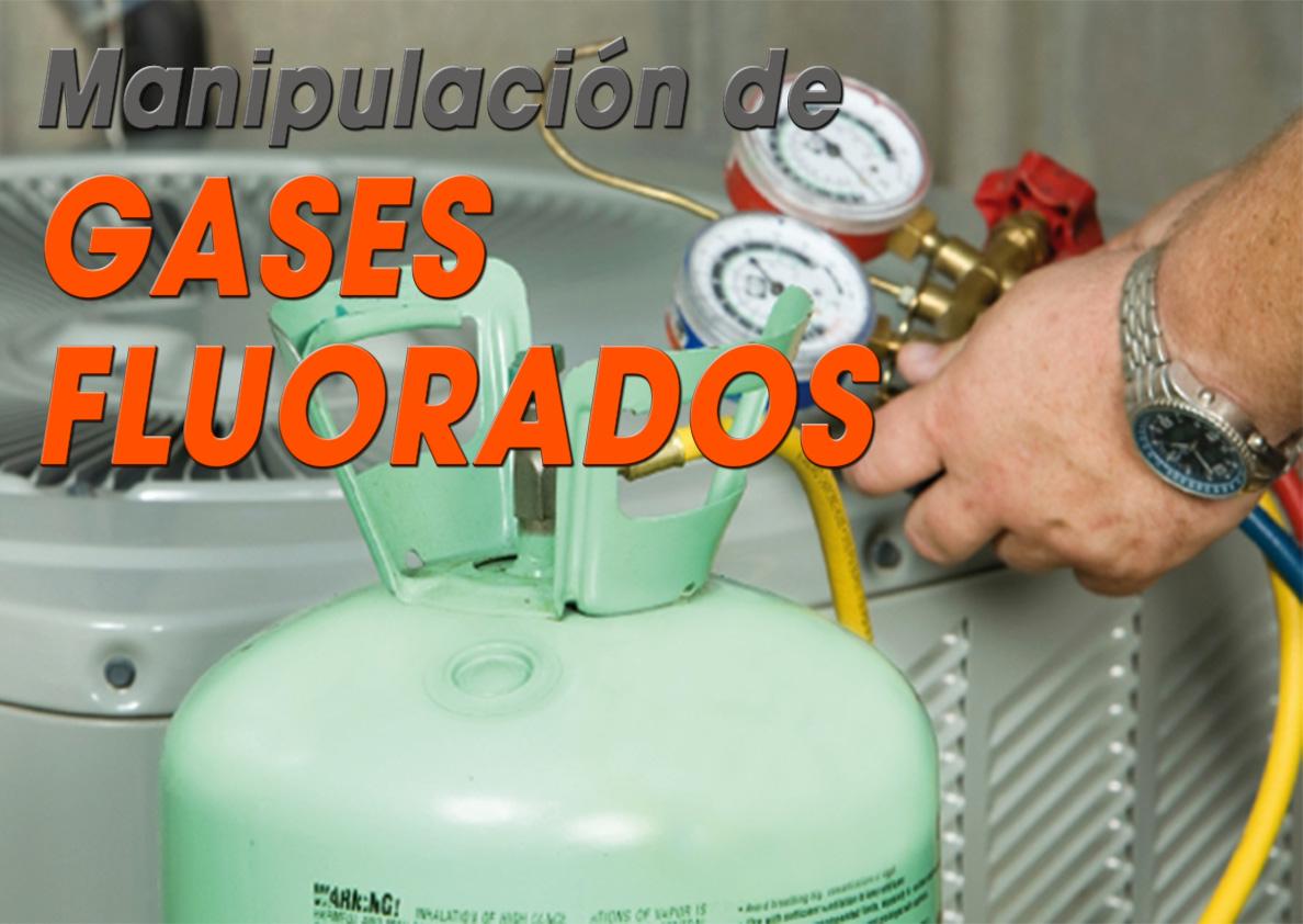 PFC - FORMACIÓN COMPLEMENTARIA PARA SUSTITUIR O REDUCIR EL USO DE GASES FLUORADOS